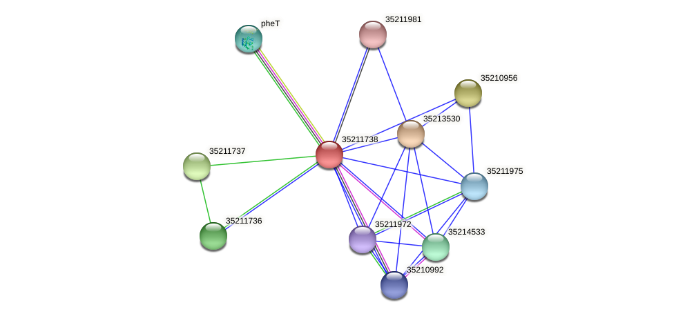 glr1174 protein (Gloeobacter violaceus) - STRING interaction network