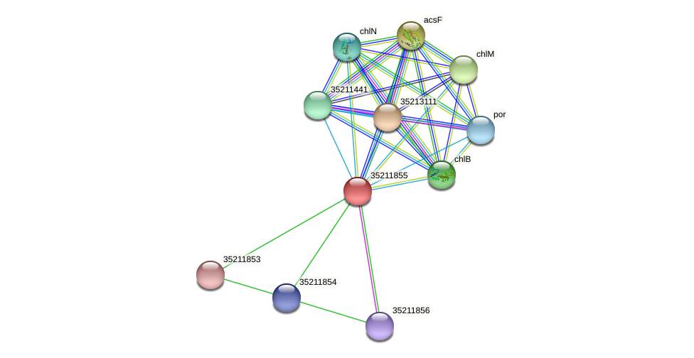 glr1291 protein (Gloeobacter violaceus) - STRING interaction network