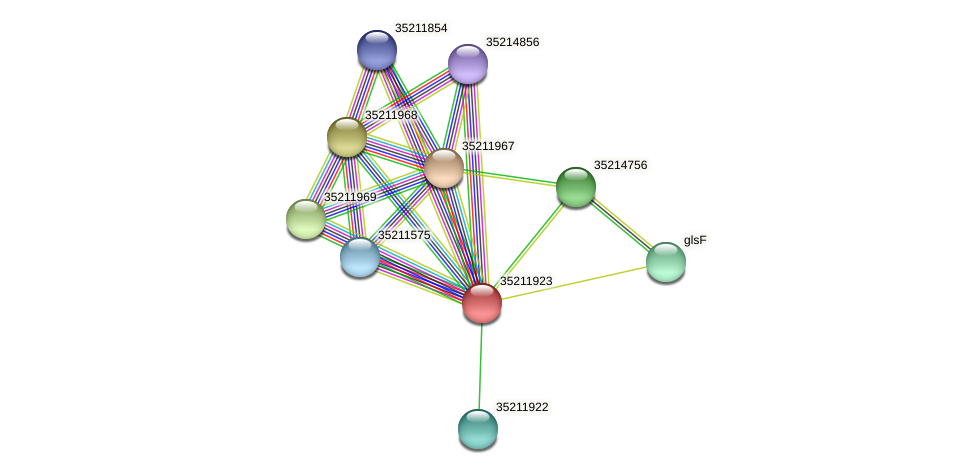 glr1359 protein (Gloeobacter violaceus) - STRING interaction network