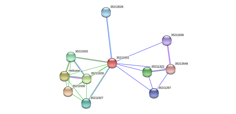 glr1367 protein (Gloeobacter violaceus) - STRING interaction network