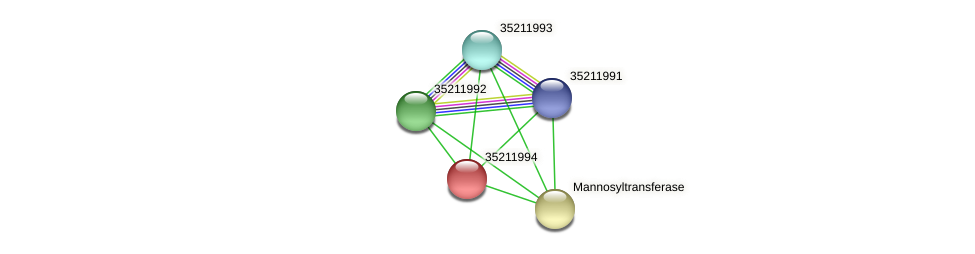 glr1429 protein (Gloeobacter violaceus) - STRING interaction network