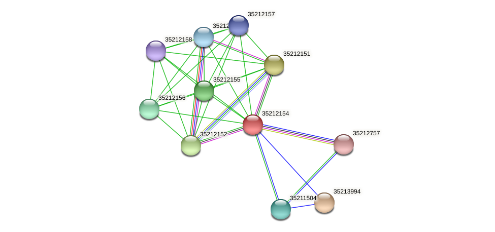 glr1589 protein (Gloeobacter violaceus) - STRING interaction network