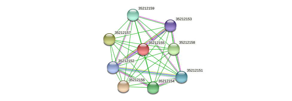 glr1590 protein (Gloeobacter violaceus) - STRING interaction network