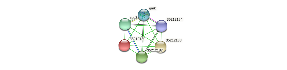 glr1624 protein (Gloeobacter violaceus) - STRING interaction network