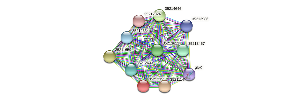glr1630 protein (Gloeobacter violaceus) - STRING interaction network