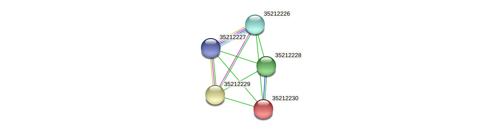 glr1665 protein (Gloeobacter violaceus) - STRING interaction network