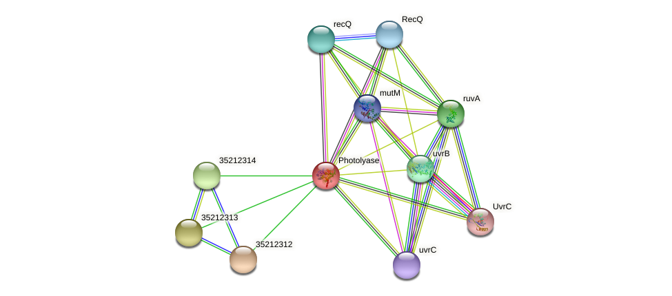 glr1749 protein (Gloeobacter violaceus) - STRING interaction network