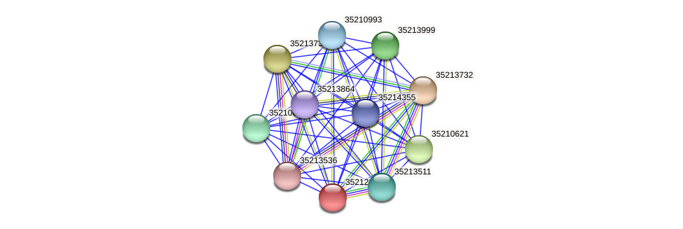 glr1778 protein (Gloeobacter violaceus) - STRING interaction network