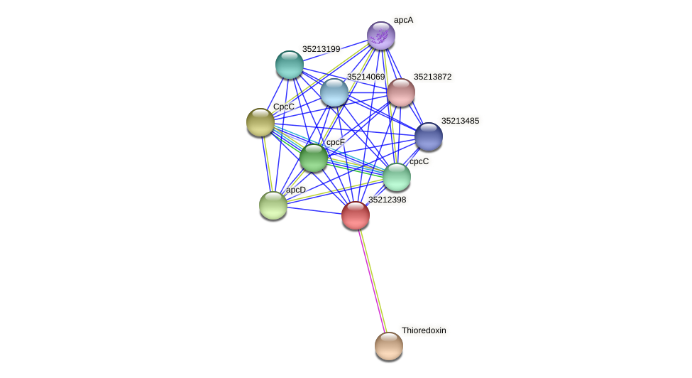 glr1832 protein (Gloeobacter violaceus) - STRING interaction network
