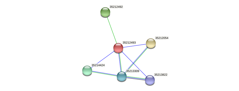 glr1927 protein (Gloeobacter violaceus) - STRING interaction network