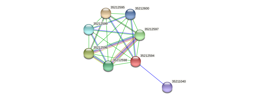glr2027 protein (Gloeobacter violaceus) - STRING interaction network