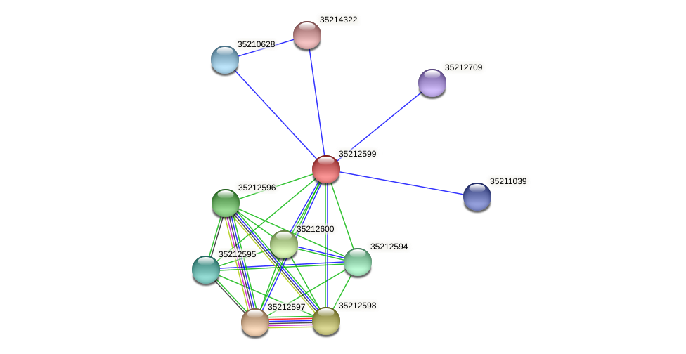 glr2032 protein (Gloeobacter violaceus) - STRING interaction network