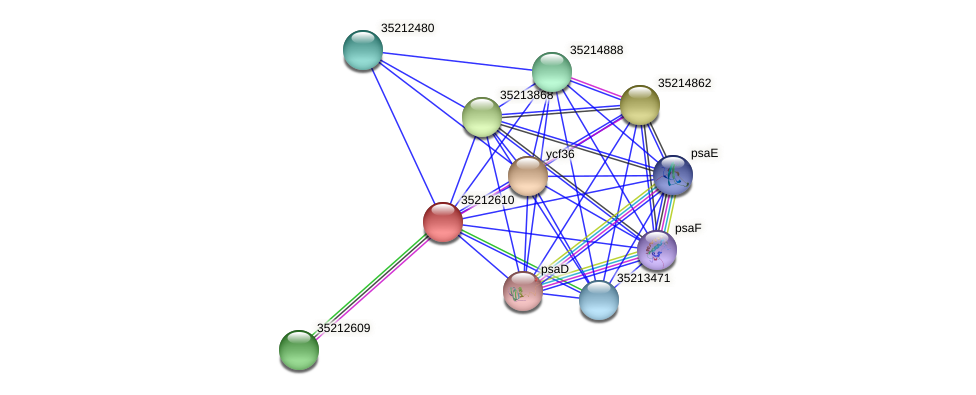 glr2043 protein (Gloeobacter violaceus) - STRING interaction network
