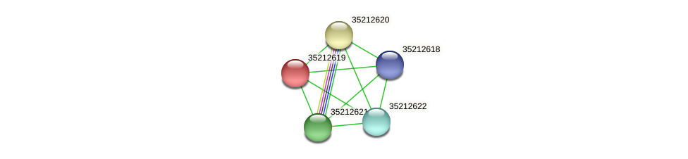 glr2052 protein (Gloeobacter violaceus) - STRING interaction network