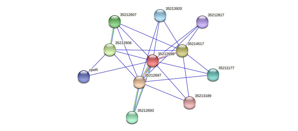glr2131 protein (Gloeobacter violaceus) - STRING interaction network