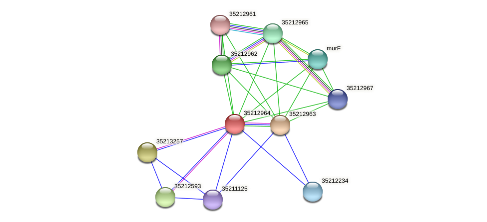 glr2396 protein (Gloeobacter violaceus) - STRING interaction network