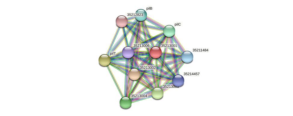 glr2433 protein (Gloeobacter violaceus) - STRING interaction network