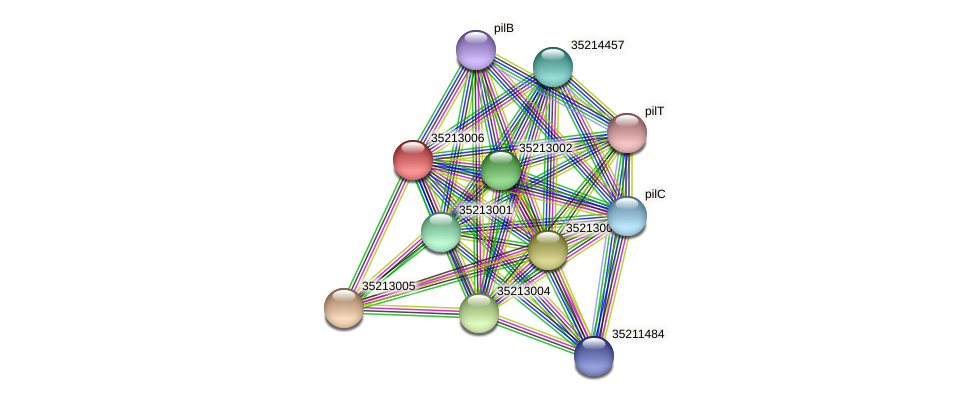 glr2438 protein (Gloeobacter violaceus) - STRING interaction network