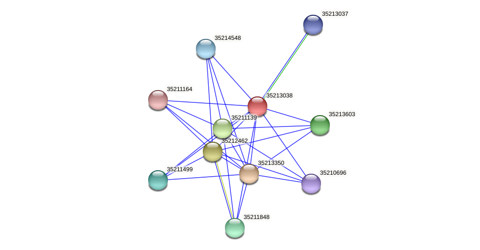 glr2470 protein (Gloeobacter violaceus) - STRING interaction network