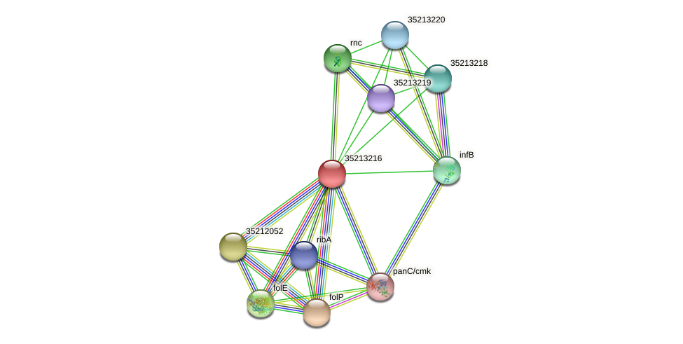 glr2647 protein (Gloeobacter violaceus) - STRING interaction network