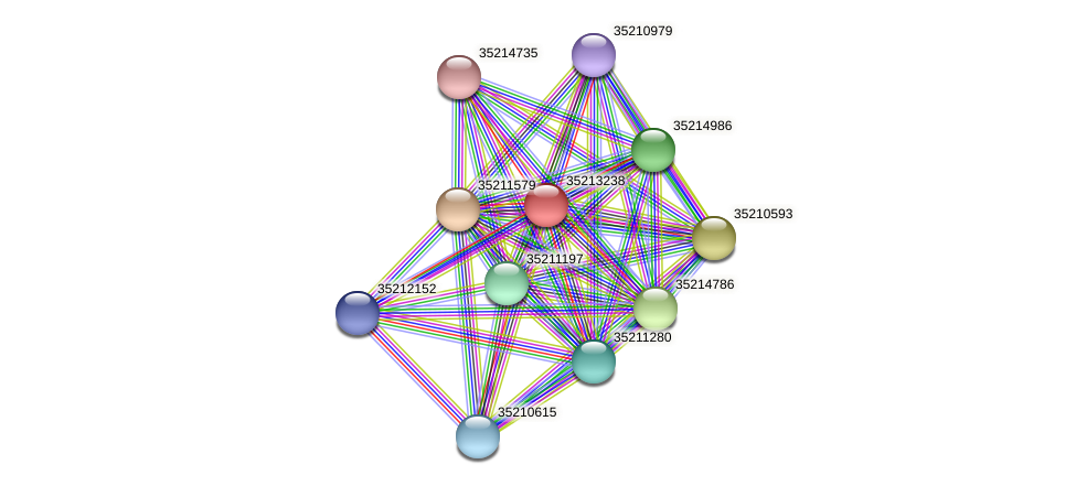 glr2669 protein (Gloeobacter violaceus) - STRING interaction network