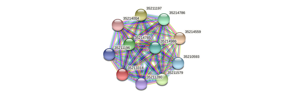 glr2749 protein (Gloeobacter violaceus) - STRING interaction network