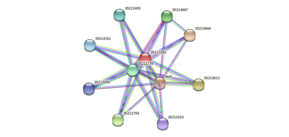 glr2821 protein (Gloeobacter violaceus) - STRING interaction network