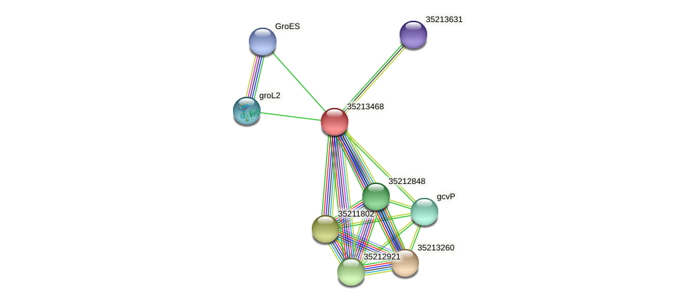 glr2898 protein (Gloeobacter violaceus) - STRING interaction network