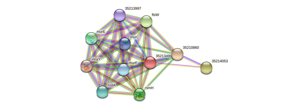 glr2929 protein (Gloeobacter violaceus) - STRING interaction network