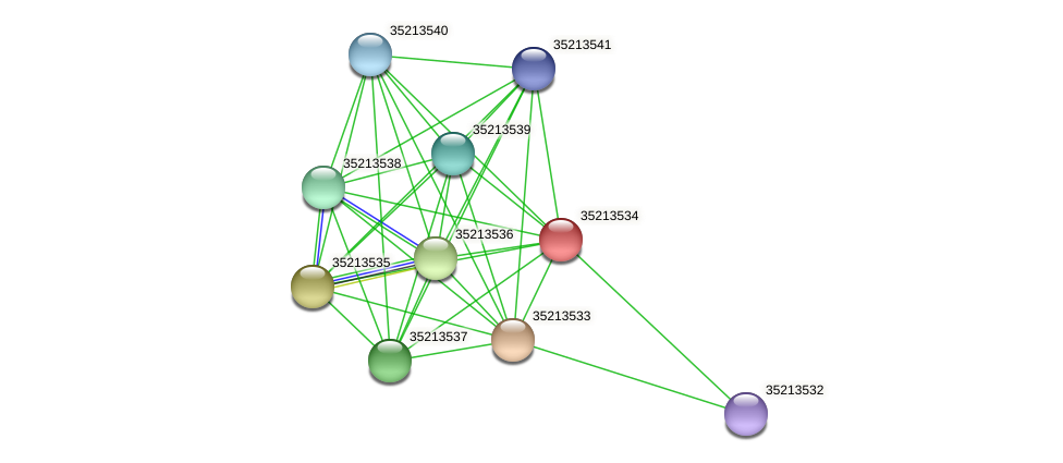 glr2964 protein (Gloeobacter violaceus) - STRING interaction network