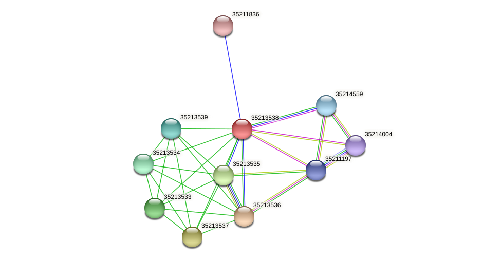 glr2968 protein (Gloeobacter violaceus) - STRING interaction network