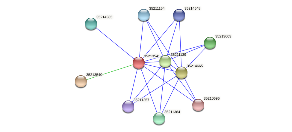 glr2971 protein (Gloeobacter violaceus) - STRING interaction network