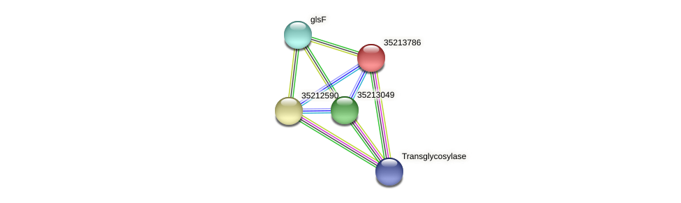 glr3215 protein (Gloeobacter violaceus) - STRING interaction network