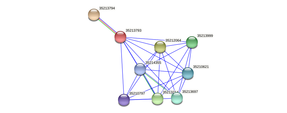 glr3222 protein (Gloeobacter violaceus) - STRING interaction network