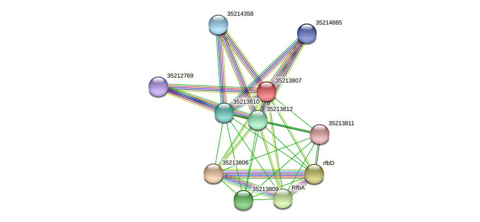 glr3236 protein (Gloeobacter violaceus) - STRING interaction network