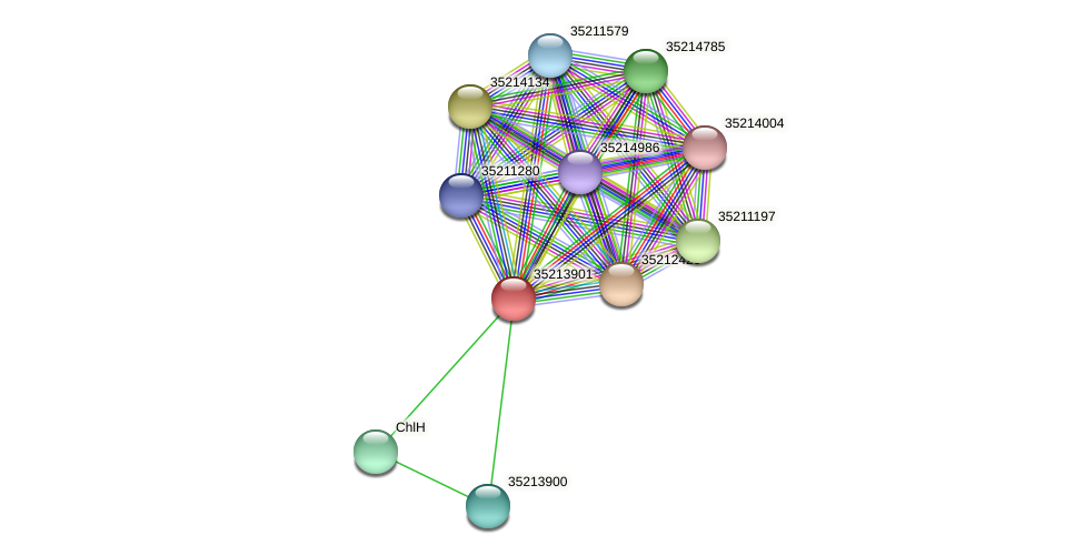 glr3330 protein (Gloeobacter violaceus) - STRING interaction network