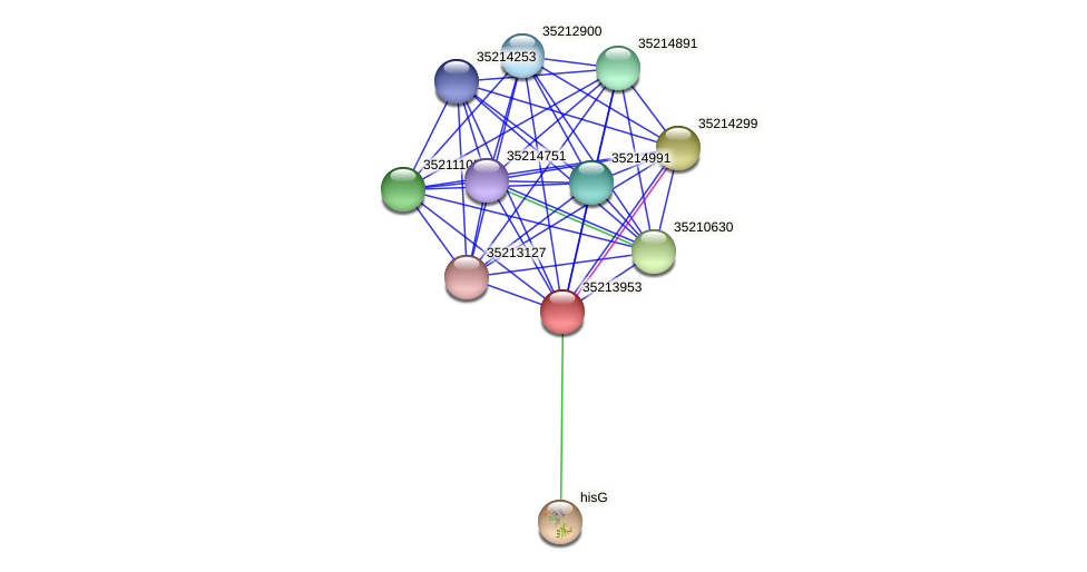 glr3382 protein (Gloeobacter violaceus) - STRING interaction network