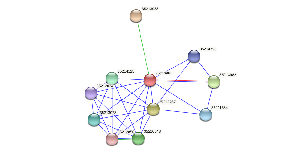 glr3409 protein (Gloeobacter violaceus) - STRING interaction network