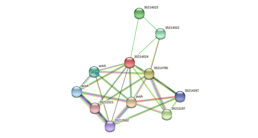 glr3452 protein (Gloeobacter violaceus) - STRING interaction network