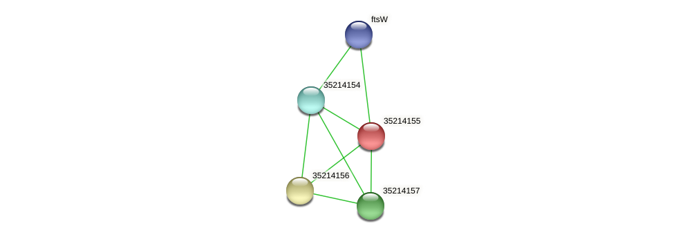 glr3583 protein (Gloeobacter violaceus) - STRING interaction network