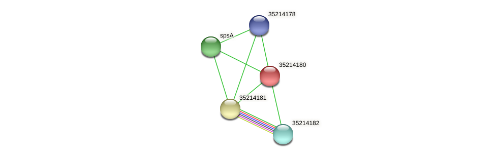 glr3608 protein (Gloeobacter violaceus) - STRING interaction network