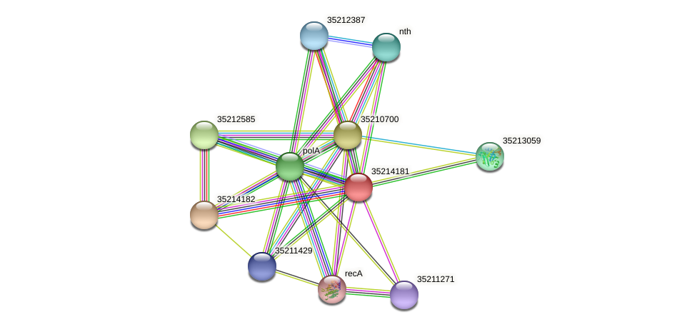 glr3609 protein (Gloeobacter violaceus) - STRING interaction network