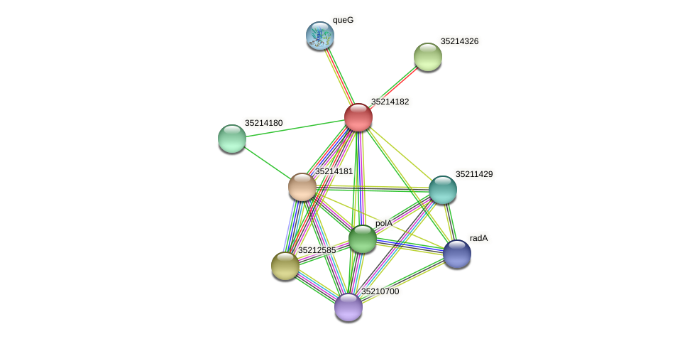 glr3610 protein (Gloeobacter violaceus) - STRING interaction network