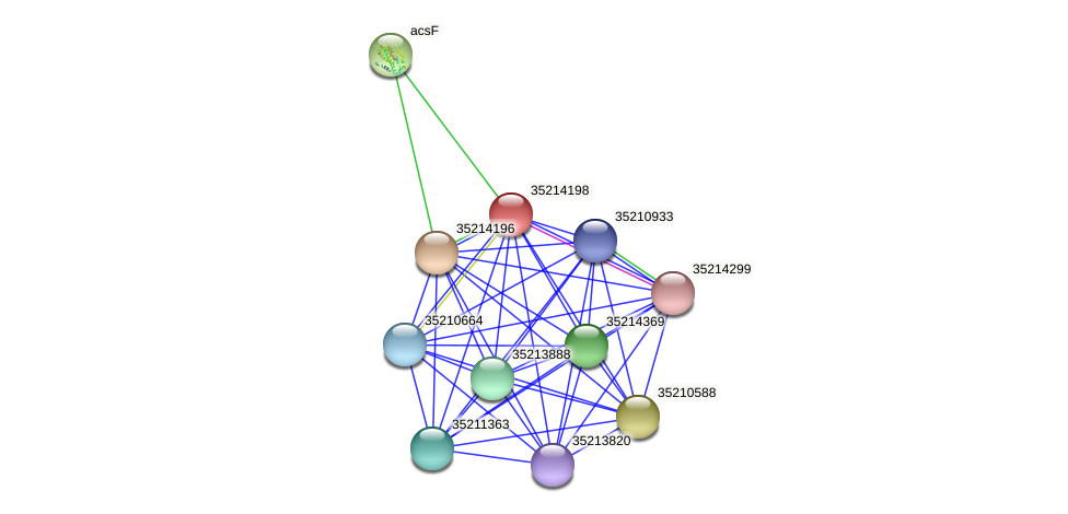 glr3626 protein (Gloeobacter violaceus) - STRING interaction network