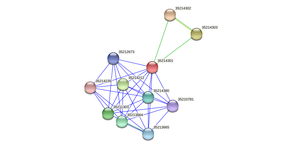 glr3728 protein (Gloeobacter violaceus) - STRING interaction network