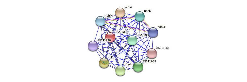 glr3763 protein (Gloeobacter violaceus) - STRING interaction network
