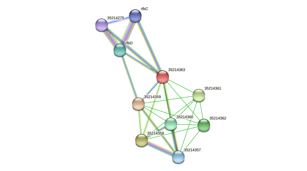 glr3790 protein (Gloeobacter violaceus) - STRING interaction network