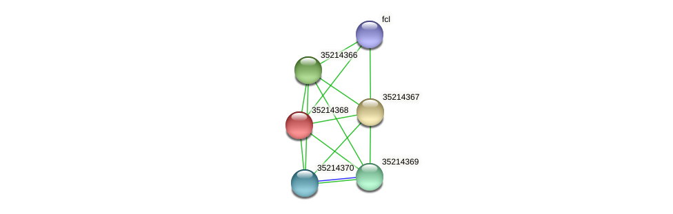 glr3795 protein (Gloeobacter violaceus) - STRING interaction network