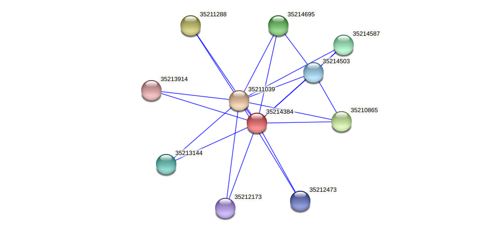 glr3811 protein (Gloeobacter violaceus) - STRING interaction network