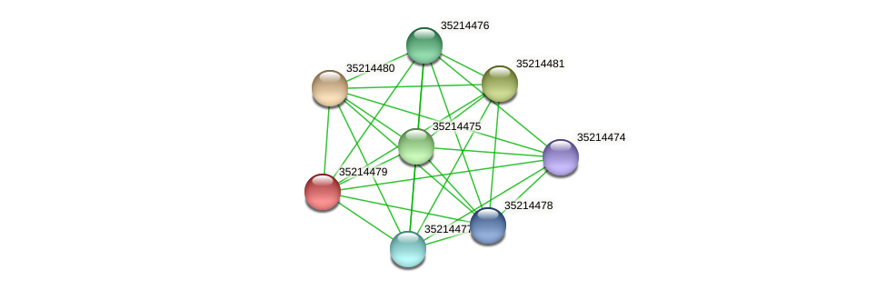 glr3906 protein (Gloeobacter violaceus) - STRING interaction network
